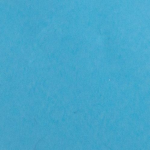 Semi-Gloss (Plastic Wet Look) Light Blue