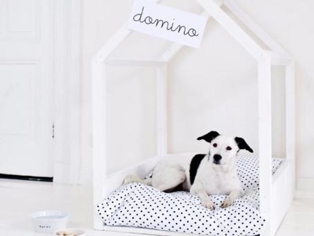 My Favorite DIY Dog Beds