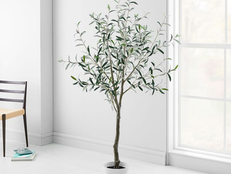 The Best Faux Olive Trees
