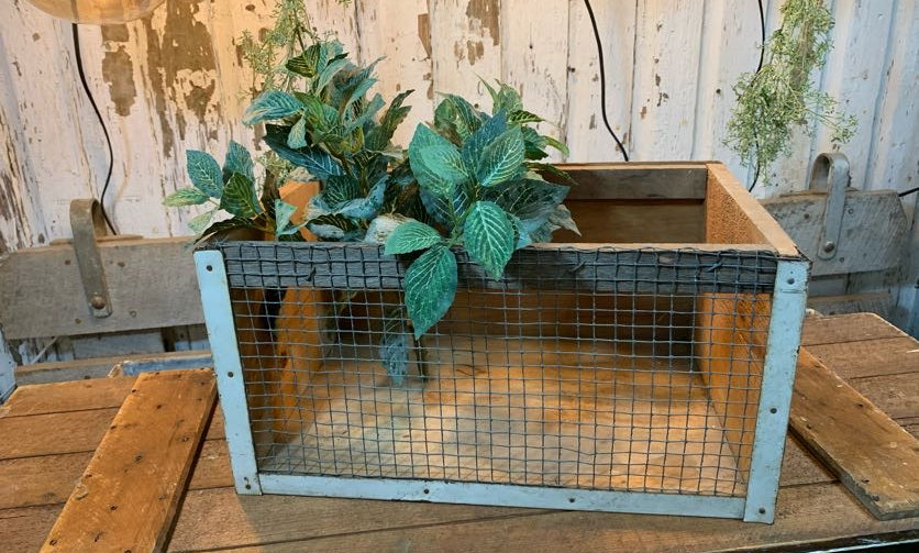 White Wooden Wire Front Crate