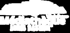 Logo MLB 2019_blanc.png