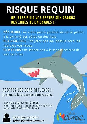 Affiche risque requin juillet 2020.jpg