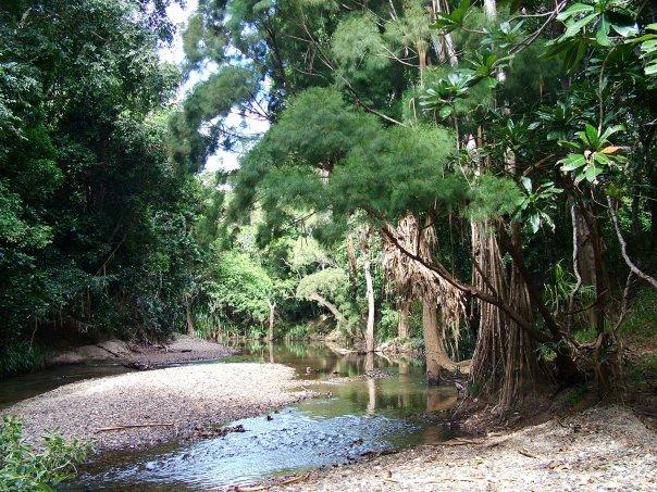 Le Parc Provincial de Néhoué