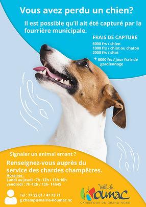 Affiche_fourrière_municipale_2020.jpg