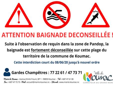 Attention ! Baignade déconseillée sur les plages de Pandop