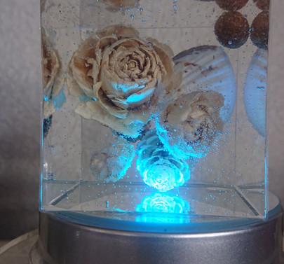 ドライフラワー『クリスタルアートリウム』固まるハーバリウム