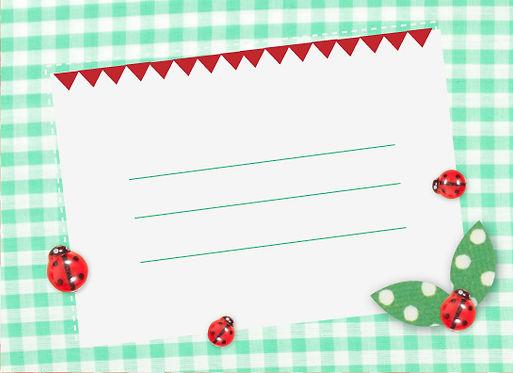 Gift Card Enclosure