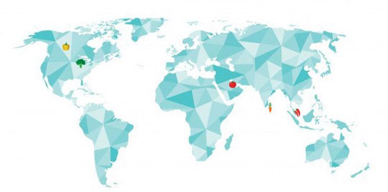 world map vegge.jpg