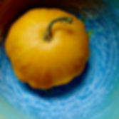 Beautiful round yellow squash in an equally beautiful blue ceramic bowl. Photograph by Ken Schuster.
