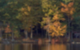 Fall colors on the Kezar Lake shoreline. Sutton NH. Photograph by Ken Schuster.
