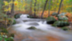 This little creek doubled in width as fall rain runoff roars by. Photograph by Ken Schuster.