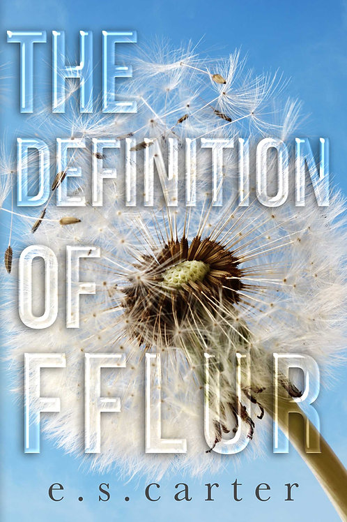 SIGNED Paperback The Definition of Fflur