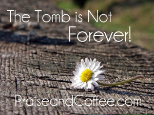 Tomb not forever