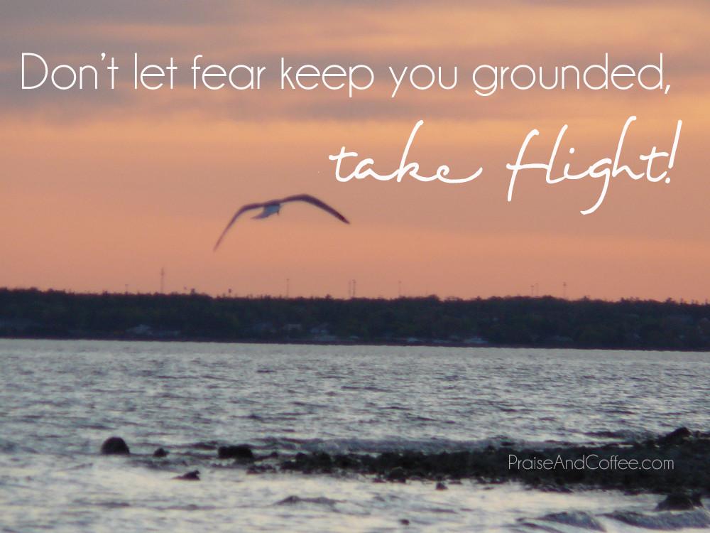 take flight 2copy