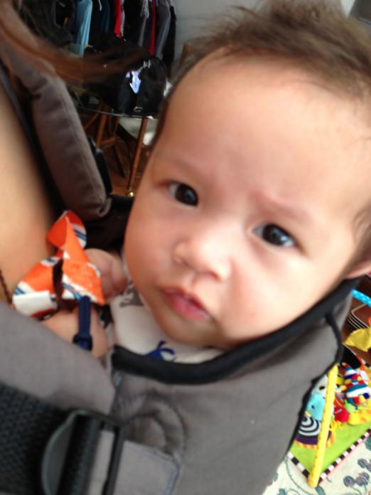 Baby Carrier, Infantino Ergonomic Union