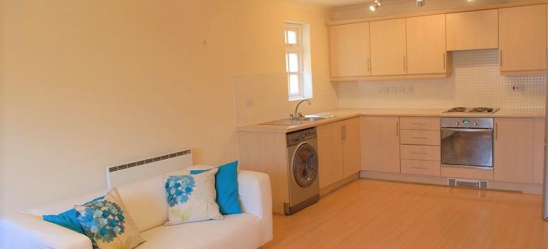 lounge +  kitchen