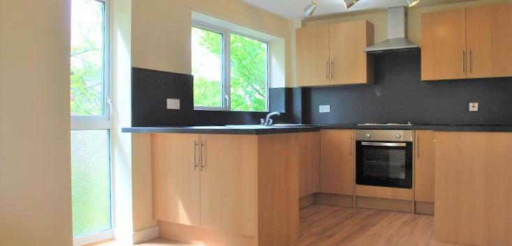 7 harper house sm kitchen.jpg