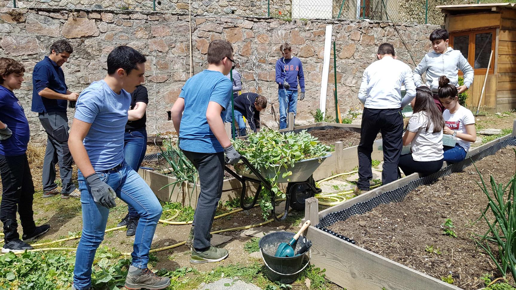 Nettoyag et préparation du jardin de printemps...