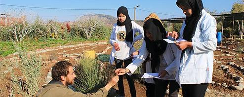 graine, ecole permaculture design, semence, regeneration des sols, regeneration vegetale, autonomie alimentaire