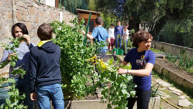 Nettoyage et préparation du jardin de printemps...