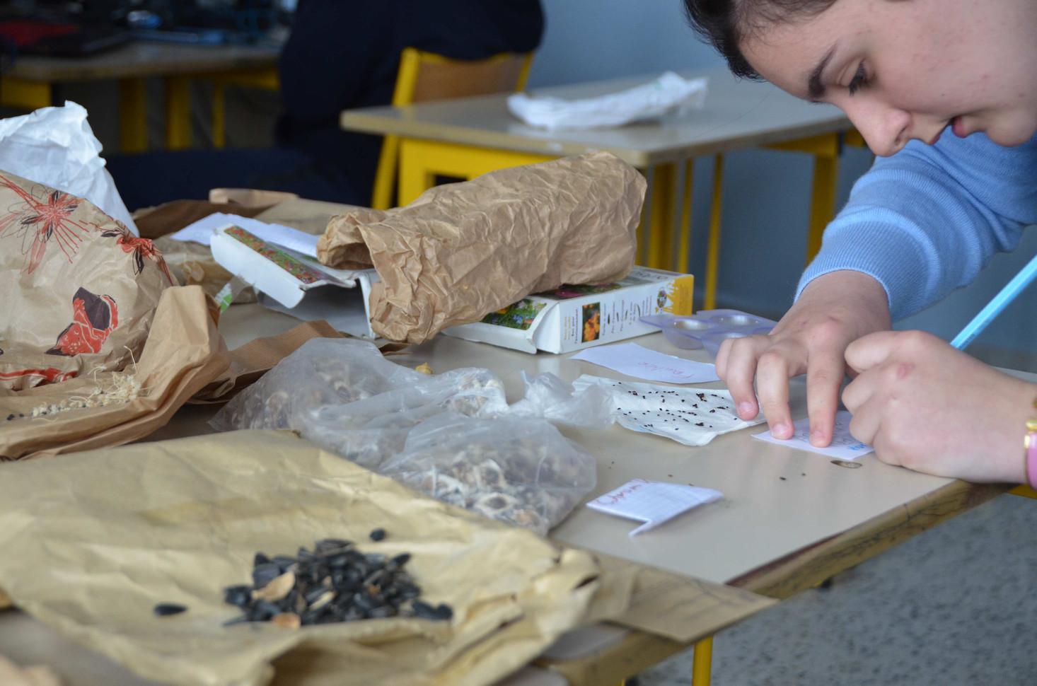 Chaque groupe écrit le nom des graines choisies pour son espace de culture.