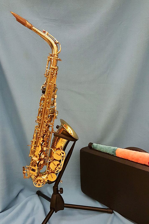 Maxtone Alto Saxophone-판매