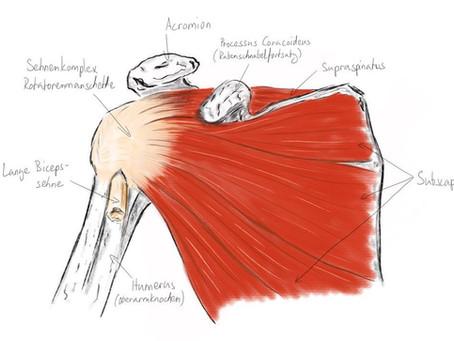 Stärke deine Schulter! Teil 1