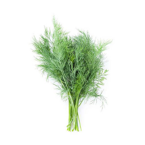Dill Leaves - (1 bunch)