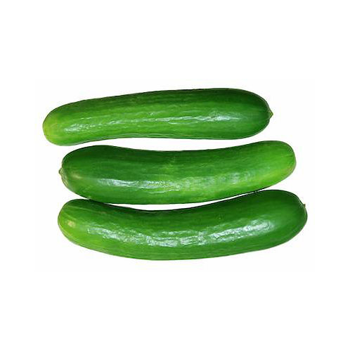 Cucumber Small (Persian) - 1 lb