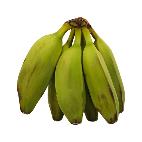 Banana Burro Green - (2 count)
