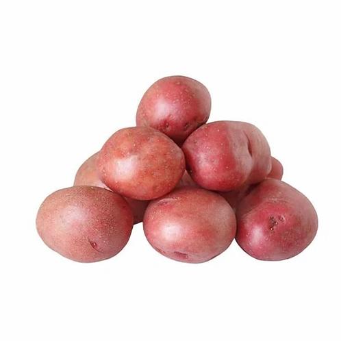 Potato Red - 1 lb