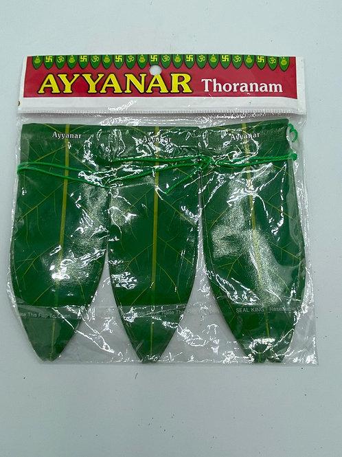 Thoran(31 Inch)