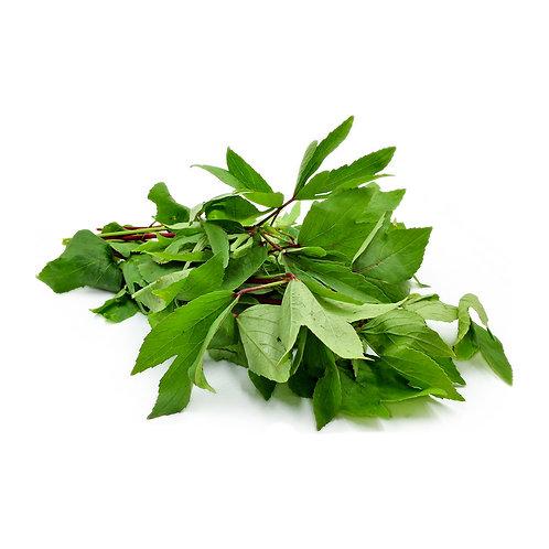 Gongura Leaves - 1 lb