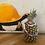 Thumbnail: Opua Long & Double Collection