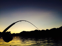 fish on sunset