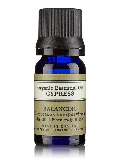 Minyak Esensial Organik Cypress
