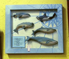 Quadro de Baleias