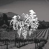 Vines & Strata.jpeg