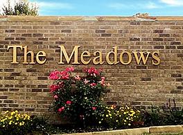 the meadows.webp