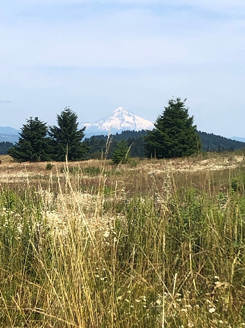 Powell Butte - May