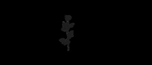 Copie de Copie de Copie de WATERMARK - N