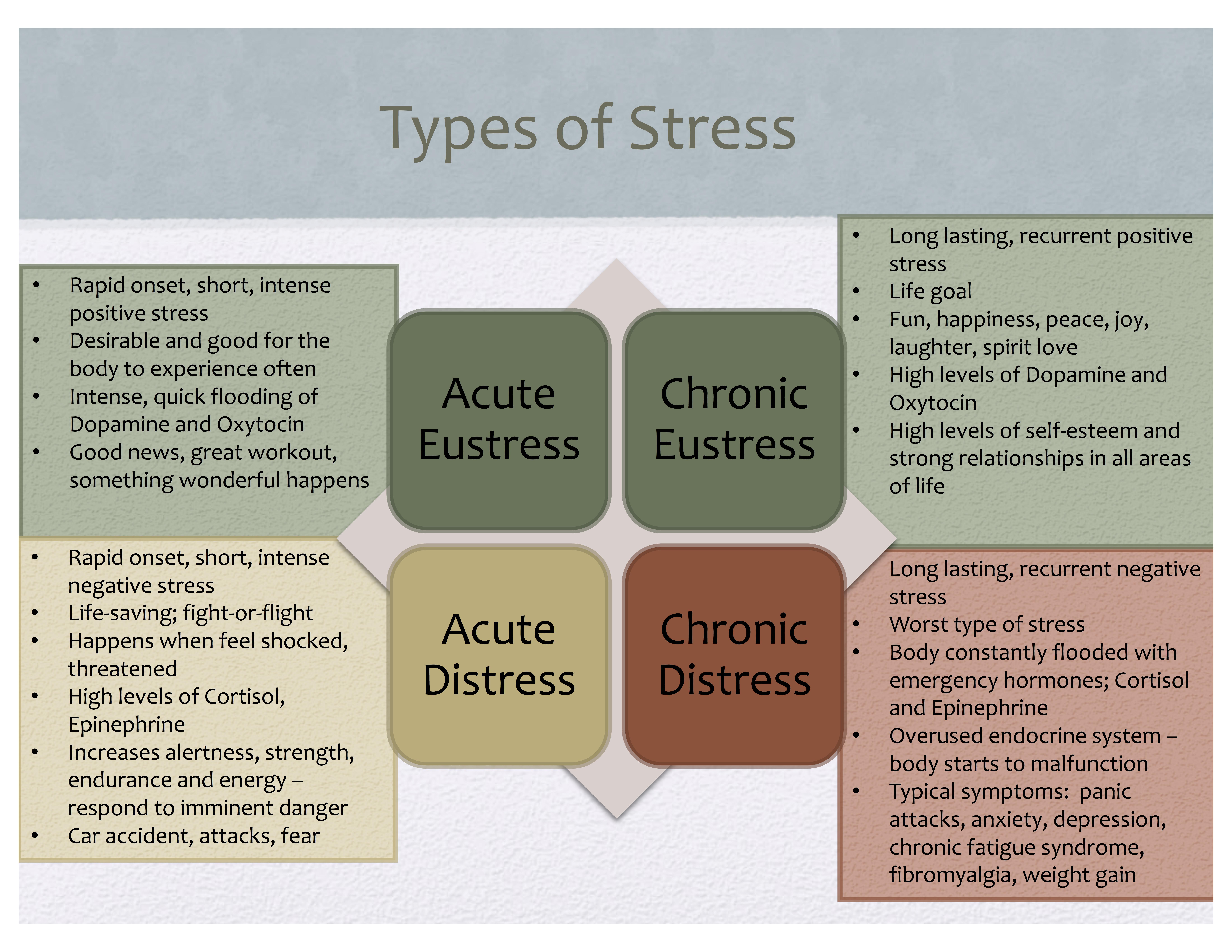 The Body And Stress Radix Nutrition Wellness Brain Health