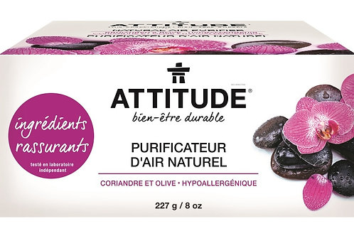 Purificateur d'air naturel, Coriandre et olive