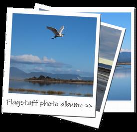 flagstaffphotoalbumn.png