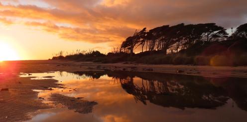 Sunset on the Oparara reserve.jpg