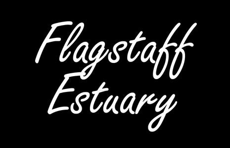 flag15.jpg