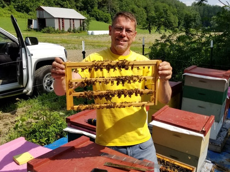 Acclimating Queen Bees to New Hampshire's North Country