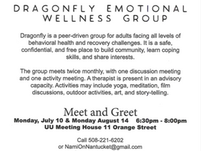 Dragonfly Emotional Wellness Group hosted by NAMI