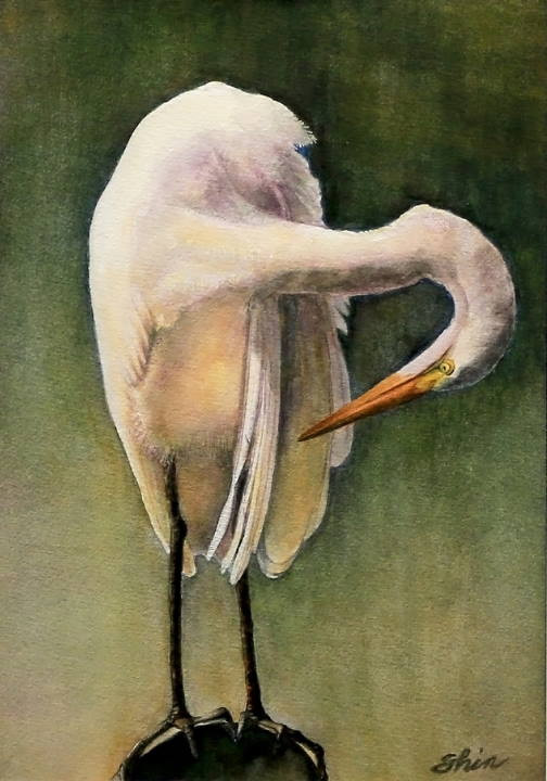 "Watercolor Painting ""White Heron"" by Shin Wilbanks"
