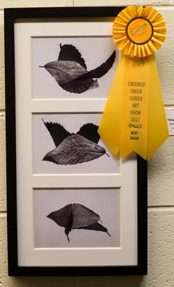 Merit Award-Amateur